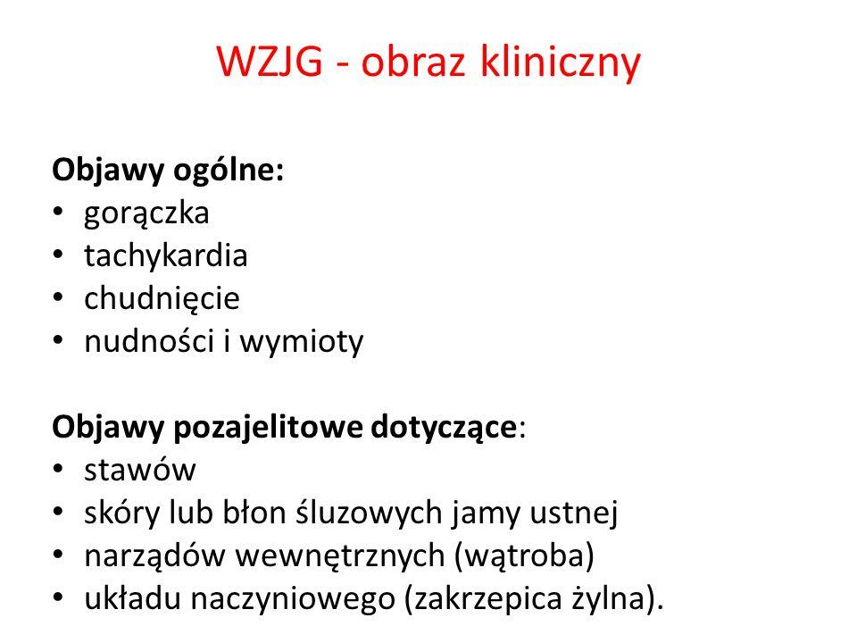WZJG - obraz kliniczny Objawy ogólne: gorączka tachykardia chudnięcie nudności i wymioty Objawy pozajelitowe dotyczące: stawów skóry lub błon śluzowyc