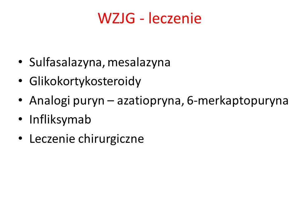 WZJG - leczenie Sulfasalazyna, mesalazyna Glikokortykosteroidy Analogi puryn – azatiopryna, 6-merkaptopuryna Infliksymab Leczenie chirurgiczne