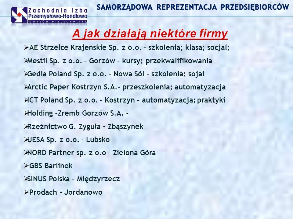 AE Strzelce Krajeńskie Sp. z o.o. – szkolenia; klasa; socjal; Mestil Sp.