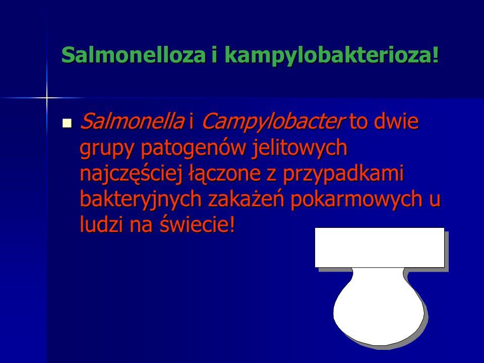 Salmonellozy drobiu –znaczenie epidemiologiczne - jak się to zaczęło! Liczba przypadków izolacji S. enteritidis od drobiu i od ludzi zaczęła dramatycz