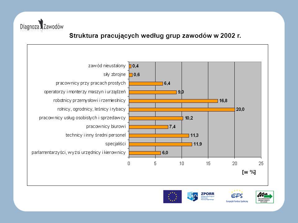 Struktura pracujących według grup zawodów w 2002 r.