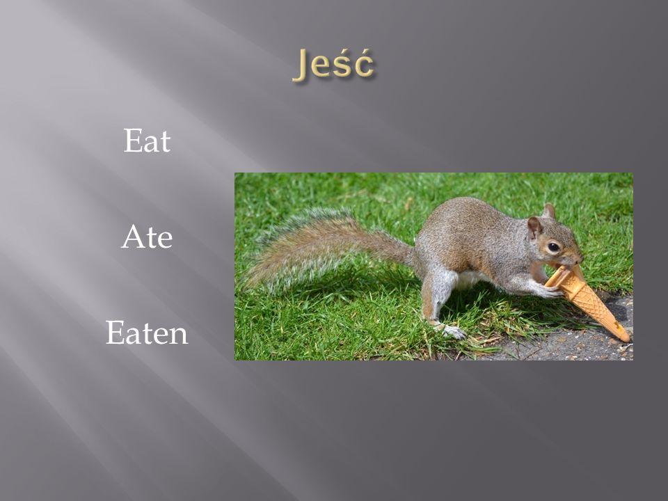 Eat Ate Eaten