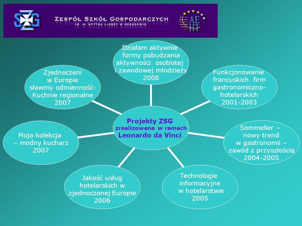 Projekty ZSG zrealizowane w ramach Leonardo da Vinci Działam aktywnie formy pobudzania aktywności osobistej i zawodowej młodzieży 2008 Funkcjonowanie