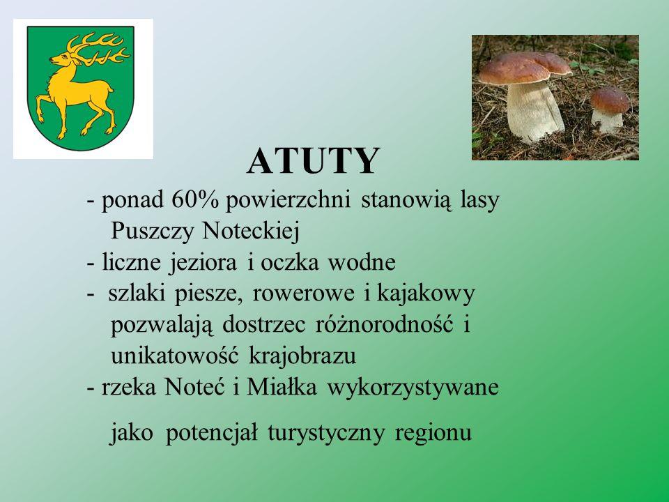 WARTO ZOBACZYĆ - dęby upamiętniające ważne dla Polaków wydarzenia historyczne - szlak napoleoński - zabytki i pomniki przyrody m.in.