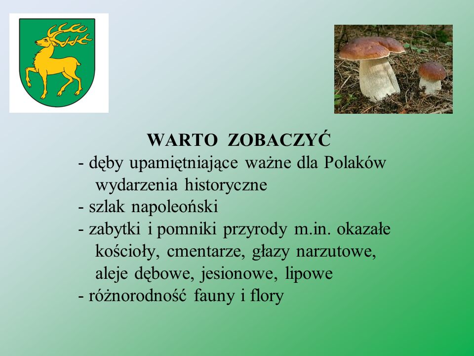 WARTO ZOBACZYĆ - dęby upamiętniające ważne dla Polaków wydarzenia historyczne - szlak napoleoński - zabytki i pomniki przyrody m.in. okazałe kościoły,