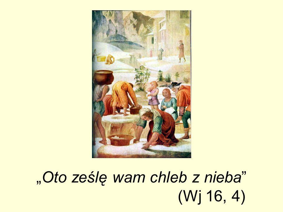 Oto ześlę wam chleb z nieba (Wj 16, 4)