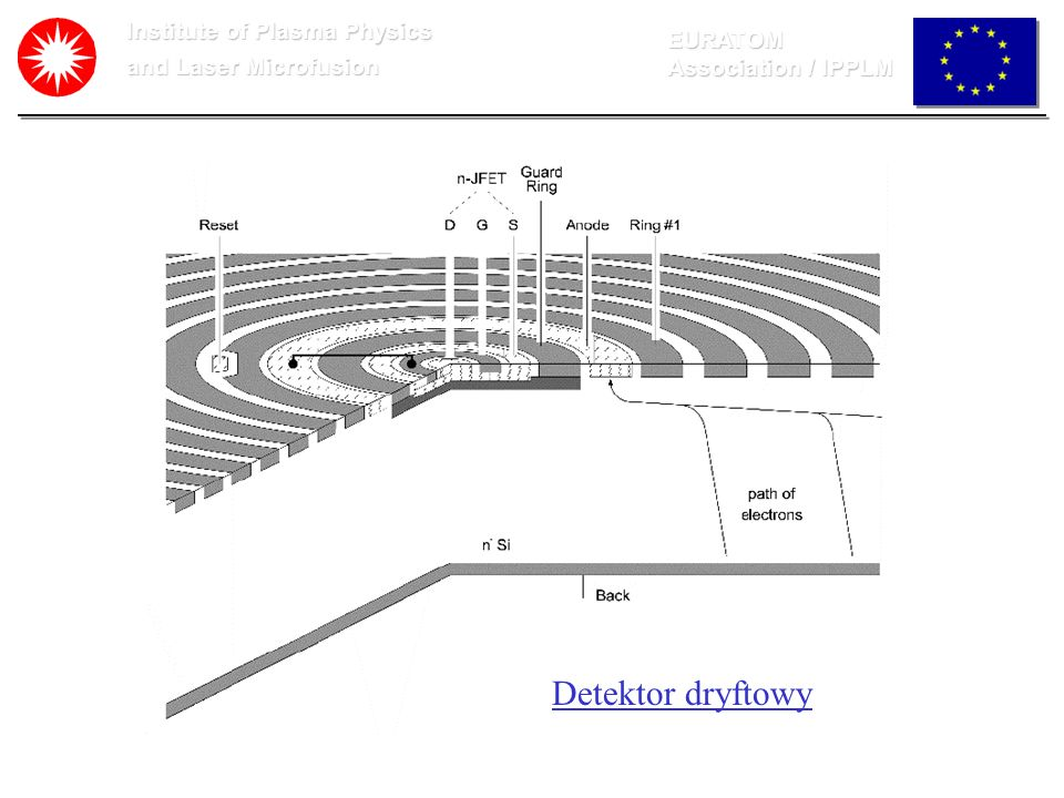 Institute of Plasma Physics and Laser Microfusion EURATOM Association / IPPLM Detektor dryftowy