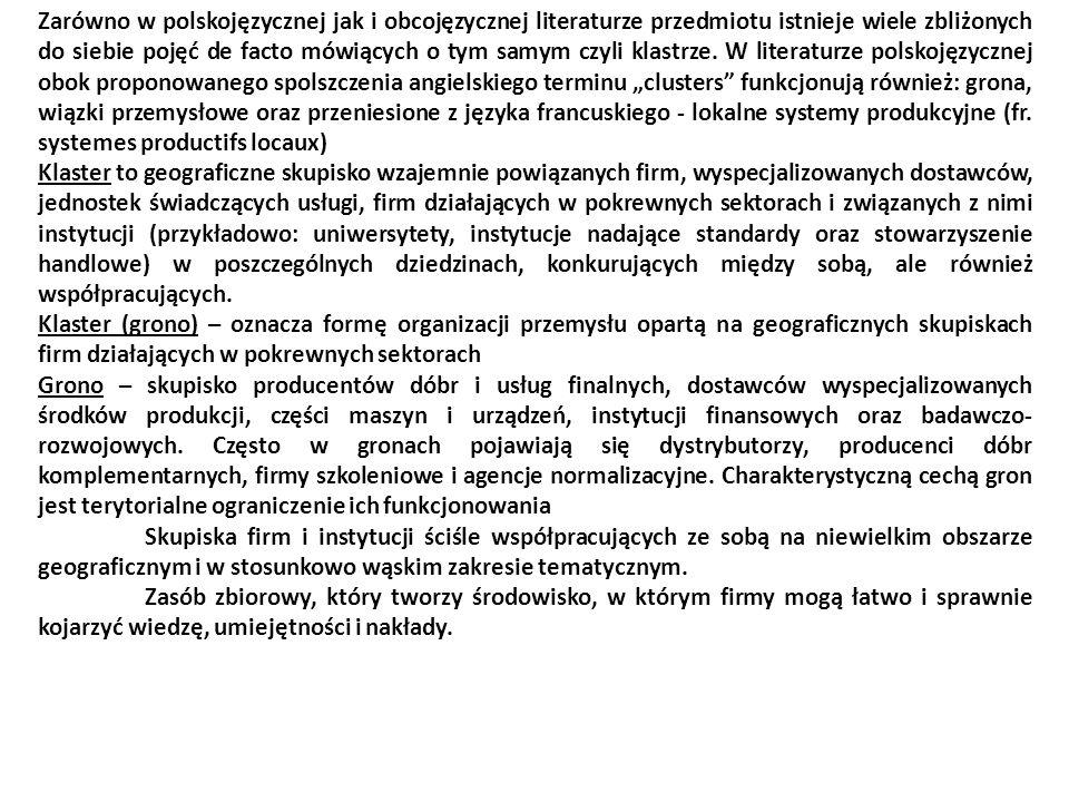 Zarówno w polskojęzycznej jak i obcojęzycznej literaturze przedmiotu istnieje wiele zbliżonych do siebie pojęć de facto mówiących o tym samym czyli kl