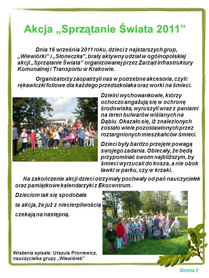 Strona 3 Akcja Sprzątanie Świata 2011 Dnia 16 września 2011 roku, dzieci z najstarszych grup, Wiewiórki i Słoneczka, brały aktywny udział w ogólnopols