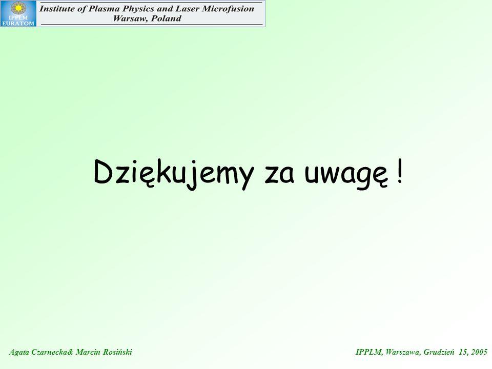 Agata Czarnecka& Marcin Rosiński IPPLM, Warszawa, Grudzień 15, 2005 Dziękujemy za uwagę !