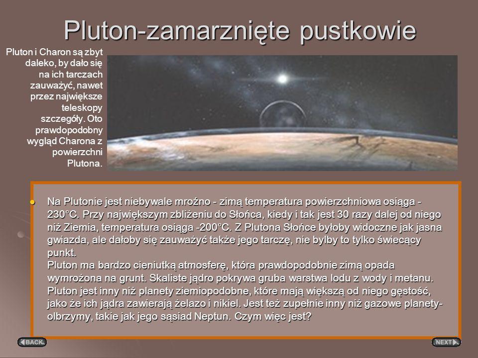 Wszystkie planety jowiszowe mają silne pola magnetyczne i rozbudowane magnetosfery. Wokół wszystkich też zauważono układy otaczających je pierścieni (