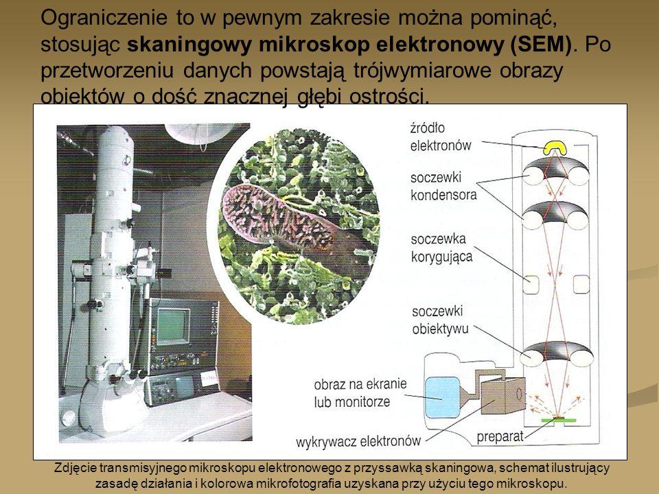 Zdjęcie transmisyjnego mikroskopu elektronowego z przyssawką skaningowa, schemat ilustrujący zasadę działania i kolorowa mikrofotografia uzyskana przy