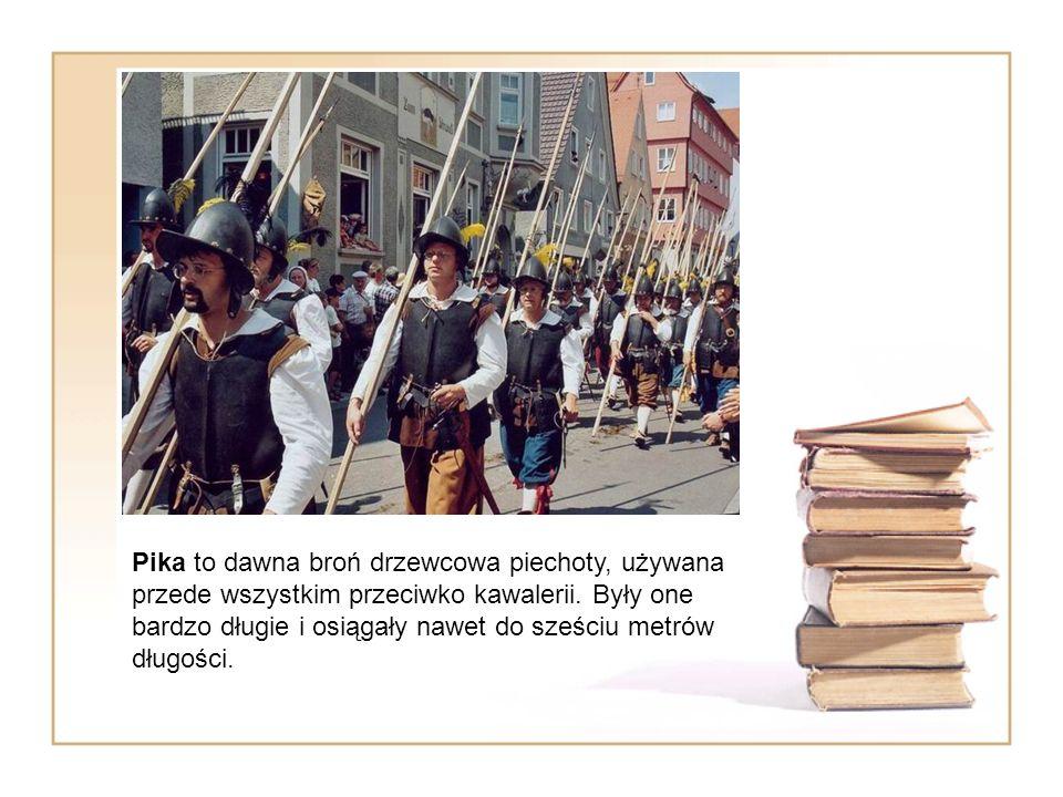 Pika to dawna broń drzewcowa piechoty, używana przede wszystkim przeciwko kawalerii. Były one bardzo długie i osiągały nawet do sześciu metrów długośc