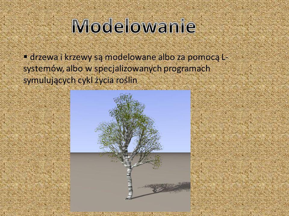 drzewa i krzewy są modelowane albo za pomocą L- systemów, albo w specjalizowanych programach symulujących cykl życia roślin