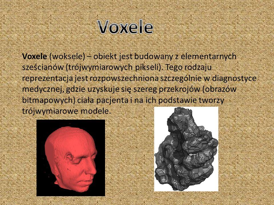 Voxele (woksele) – obiekt jest budowany z elementarnych sześcianów (trójwymiarowych pikseli). Tego rodzaju reprezentacja jest rozpowszechniona szczegó