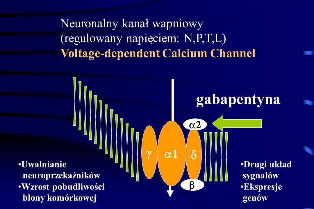 Leki przeciwdrgawkowe Stosowane w leczeniu bólów neuropatycznych. Hamują samoistne pobudzenia we włóknach nerwowych Karbamazepina (Amizepin, Tegretol)