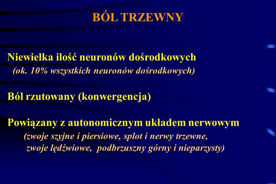 Ból somatyczny Łatwy do opisania Zlokalizowany stały lub narastający nasilający się przy zmianie pozycji Rozlany trzewny Wrażliwy na proste analgetyki