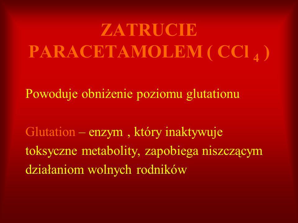 ZATRUCIE PARACETAMOLEM ( CCl 4 ) Powoduje obniżenie poziomu glutationu Glutation – enzym, który inaktywuje toksyczne metabolity, zapobiega niszczącym