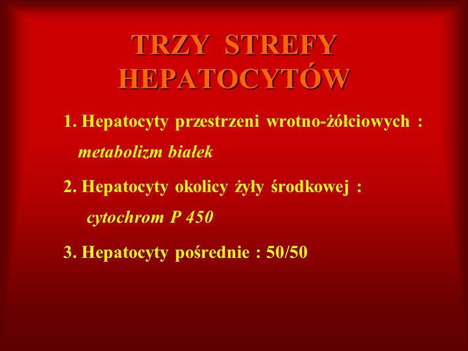 TRZY STREFY HEPATOCYTÓW 1. Hepatocyty przestrzeni wrotno-żółciowych : metabolizm białek 2. Hepatocyty okolicy żyły środkowej : cytochrom P 450 3. Hepa