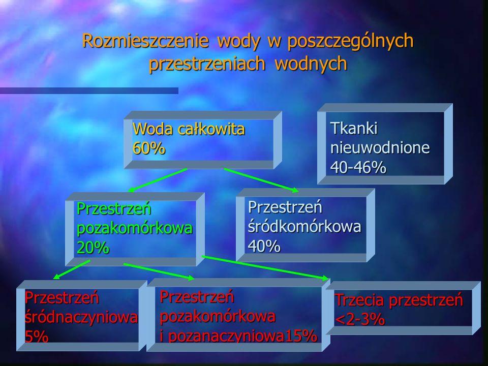 Tkankinieuwodnione40-46% Przestrzeńśródnaczyniowa5% Rozmieszczenie wody w poszczególnych przestrzeniach wodnych Woda całkowita 60% Przestrzeńpozakomór