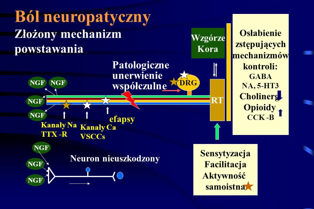 C A B neuron AUN DRG Ból samoistny Efapsy alodynia ból zależny od ukł. współczulnego