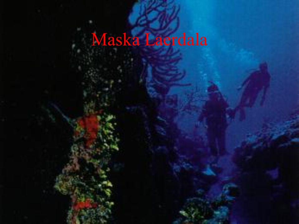 Maska Laerdala