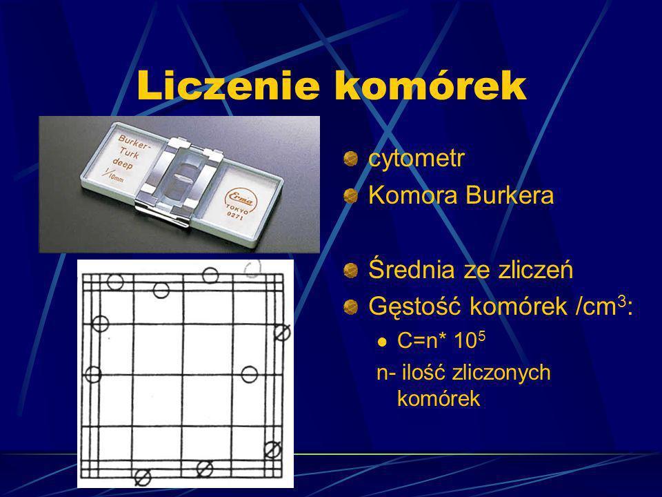 Liczenie komórek cytometr Komora Burkera Średnia ze zliczeń Gęstość komórek /cm 3 : C=n* 10 5 n- ilość zliczonych komórek