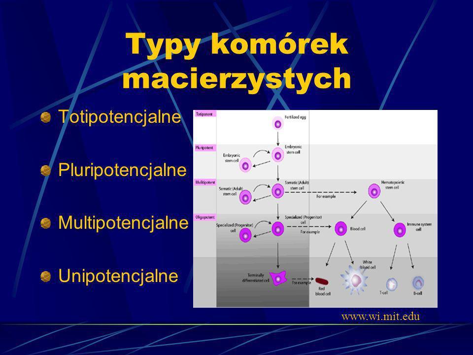 Typy komórek macierzystych Totipotencjalne Pluripotencjalne Multipotencjalne Unipotencjalne www.wi.mit.edu