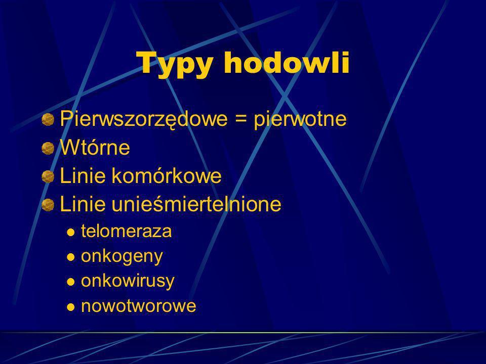 Typy hodowli Pierwszorzędowe = pierwotne Wtórne Linie komórkowe Linie unieśmiertelnione telomeraza onkogeny onkowirusy nowotworowe