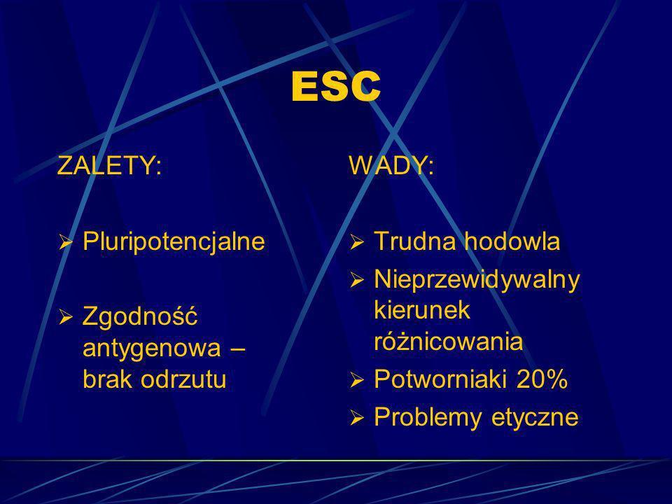 ESC ZALETY: Pluripotencjalne Zgodność antygenowa – brak odrzutu WADY: Trudna hodowla Nieprzewidywalny kierunek różnicowania Potworniaki 20% Problemy e