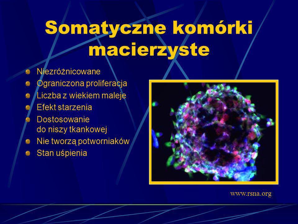 Somatyczne komórki macierzyste Niezróżnicowane Ograniczona proliferacja Liczba z wiekiem maleje Efekt starzenia Dostosowanie do niszy tkankowej Nie tw