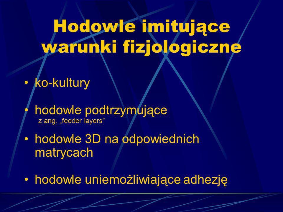 Cechy komórki macierzystej Nieograniczona ilość podziałów Zdolność do różnicowania Zdolność samoodnawiania Świat nauki 05/2002
