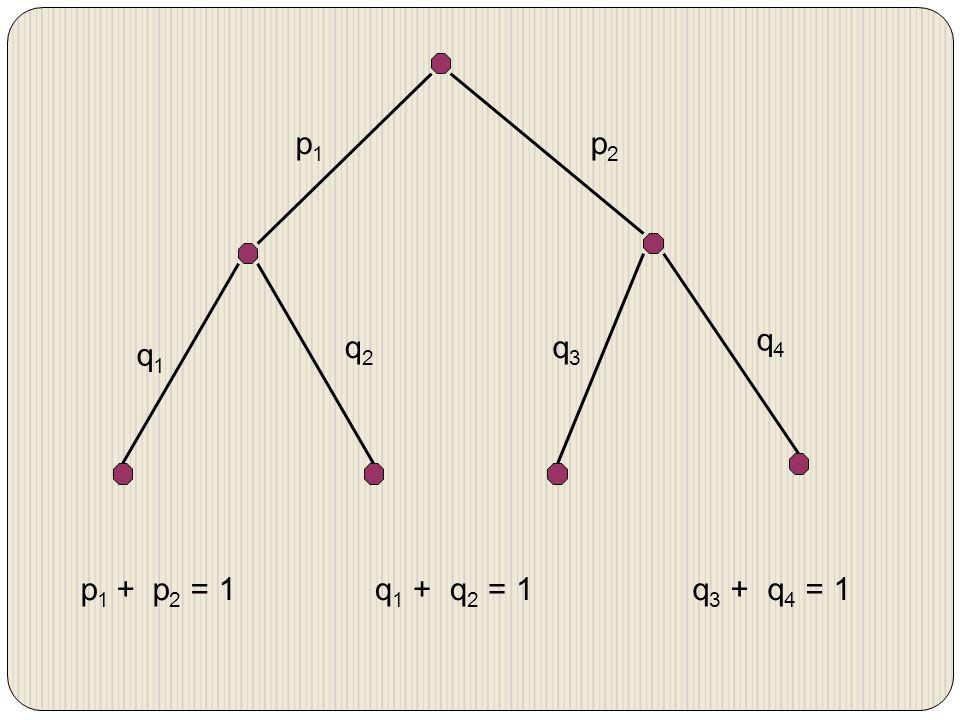 p1p1 p2p2 q1q1 q2q2 q3q3 q4q4 p 1 + p 2 = 1q 1 + q 2 = 1q 3 + q 4 = 1