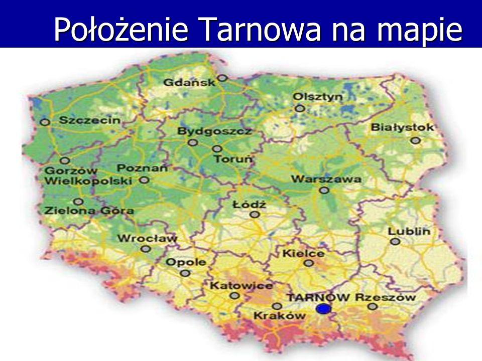 Jestem uczniem klasy IF Gimnazjum nr 4 imienia Jerzego Brauna w Tarnowie.