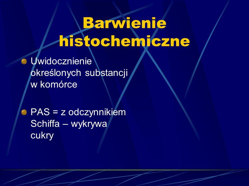 Barwienie histochemiczne Uwidocznienie określonych substancji w komórce PAS = z odczynnikiem Schiffa – wykrywa cukry