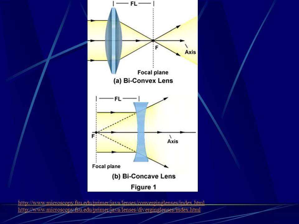 http://www.microscopy.fsu.edu/primer/java/lenses/converginglenses/index.html http://www.microscopy.fsu.edu/primer/java/lenses/diverginglenses/index.ht