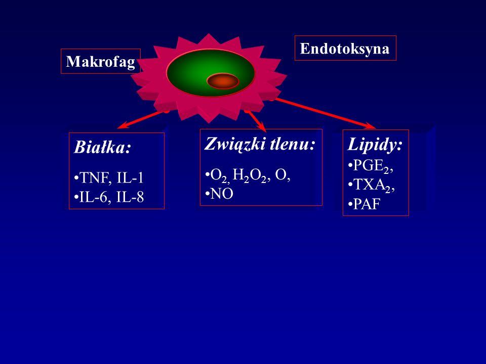 Endotoksyna Białka: TNF, IL-1 IL-6, IL-8 Związki tlenu: O 2, H 2 O 2, O, NO Lipidy: PGE 2, TXA 2, PAF Makrofag