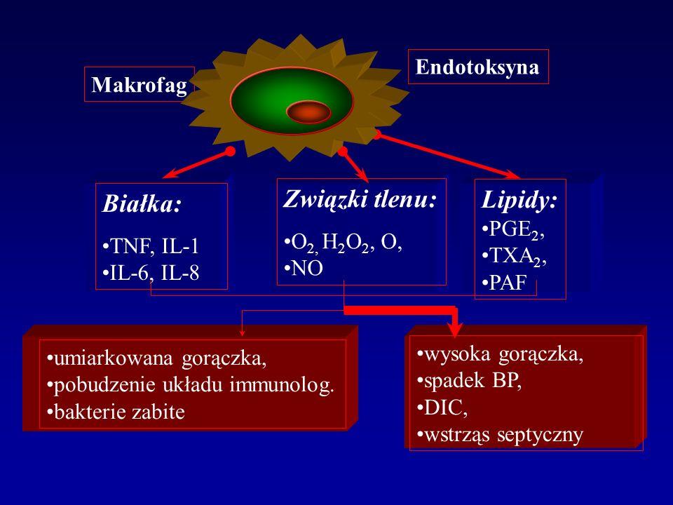 Endotoksyna Białka: TNF, IL-1 IL-6, IL-8 Związki tlenu: O 2, H 2 O 2, O, NO Lipidy: PGE 2, TXA 2, PAF umiarkowana gorączka, pobudzenie układu immunolo