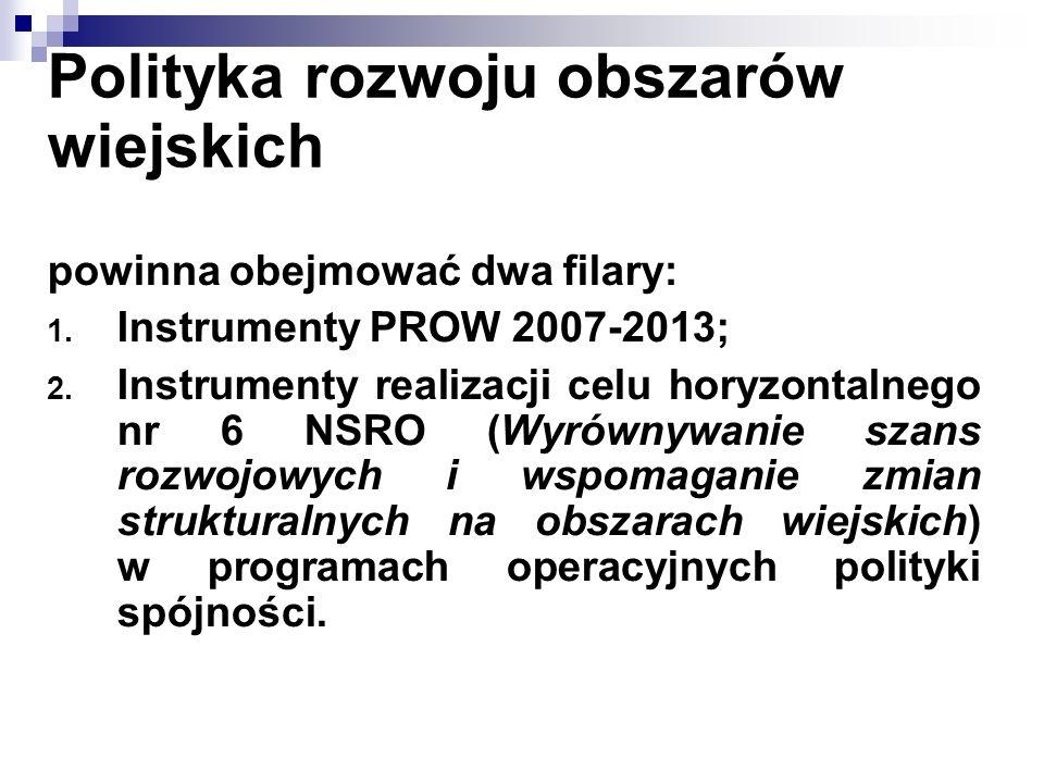 Polityka rozwoju obszarów wiejskich powinna obejmować dwa filary: 1. Instrumenty PROW 2007-2013; 2. Instrumenty realizacji celu horyzontalnego nr 6 NS