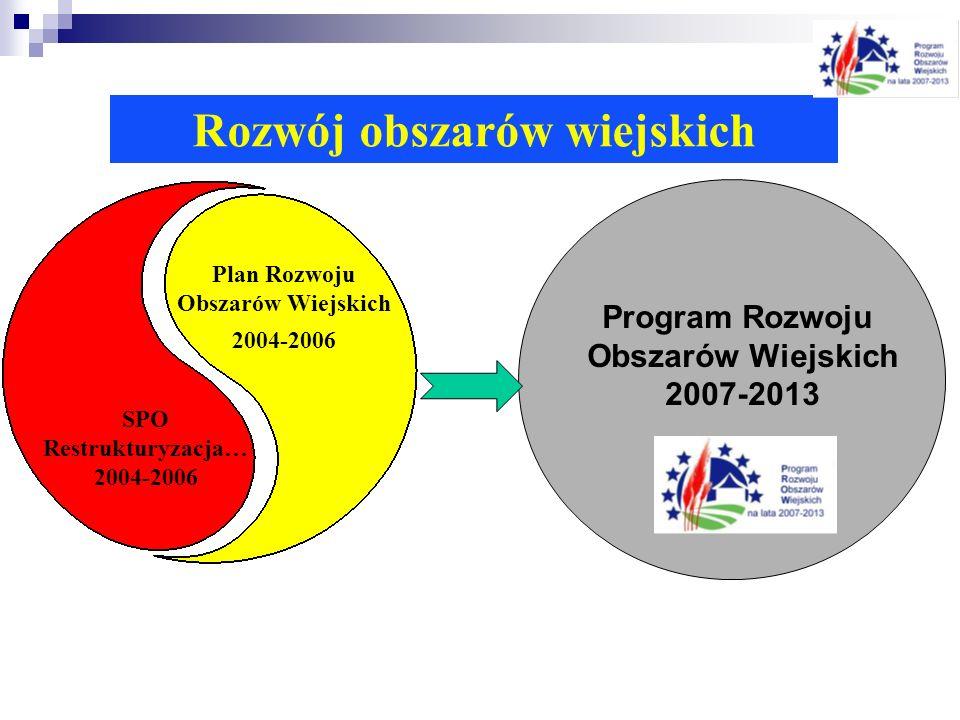 Rozwój obszarów wiejskich SPO Restrukturyzacja… 2004-2006 Plan Rozwoju Obszarów Wiejskich 2004-2006 Program Rozwoju Obszarów Wiejskich 2007-2013