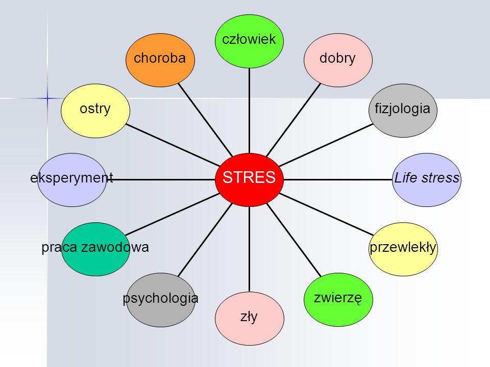 choroba ostry eksperyment praca zawodowa psychologia zły zwierzę przewlekły Life stress fizjologia dobry człowiek STRES