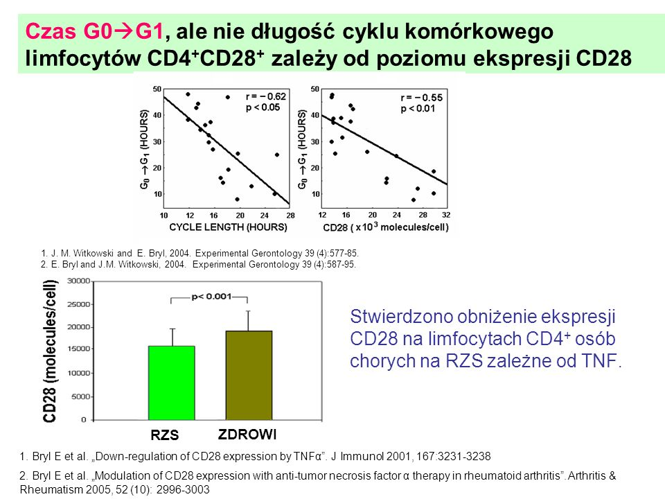 Czas G0 G1, ale nie długość cyklu komórkowego limfocytów CD4 + CD28 + zależy od poziomu ekspresji CD28 1. J. M. Witkowski and E. Bryl, 2004. Experimen