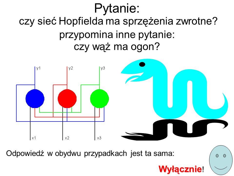 Pytanie: czy sieć Hopfielda ma sprzężenia zwrotne? przypomina inne pytanie: czy wąż ma ogon? Odpowiedź w obydwu przypadkach jest ta sama: Wyłącznie Wy
