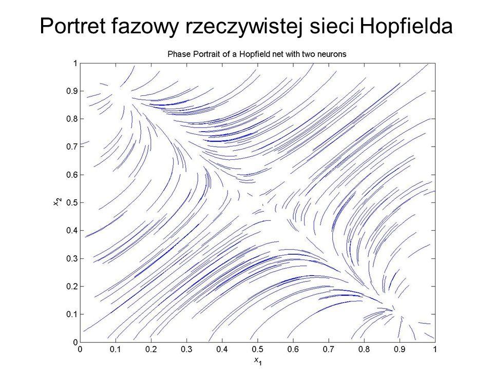 Portret fazowy rzeczywistej sieci Hopfielda