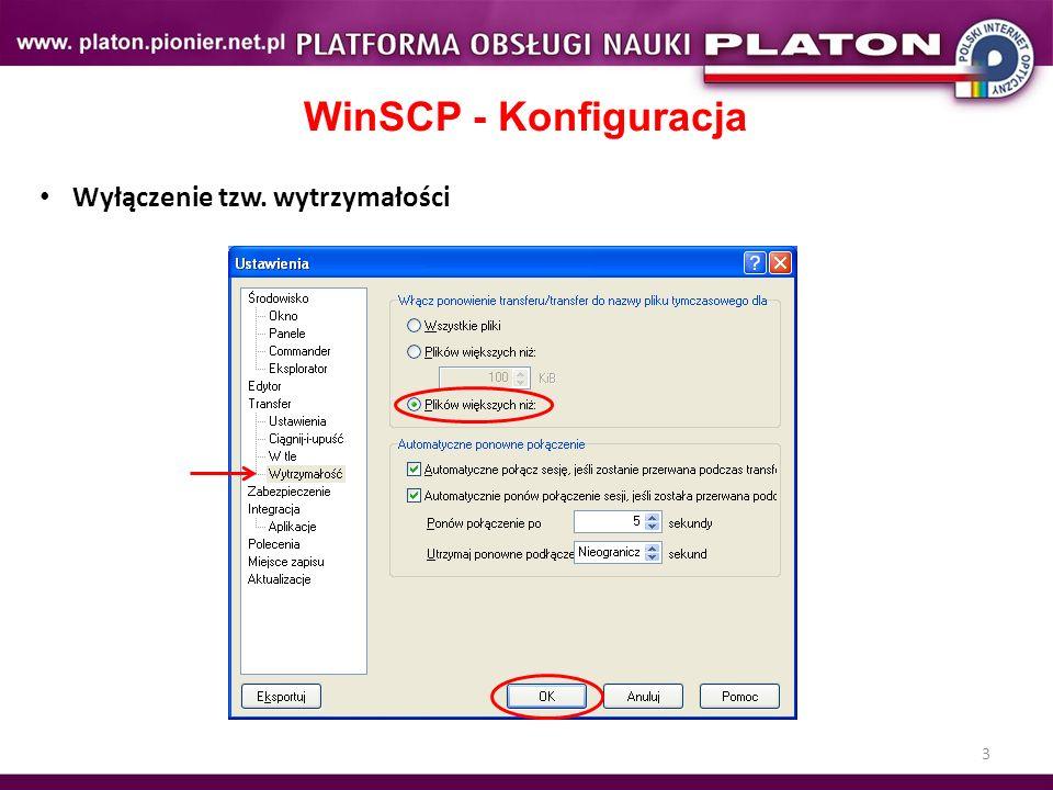 3 WinSCP - Konfiguracja Wyłączenie tzw. wytrzymałości