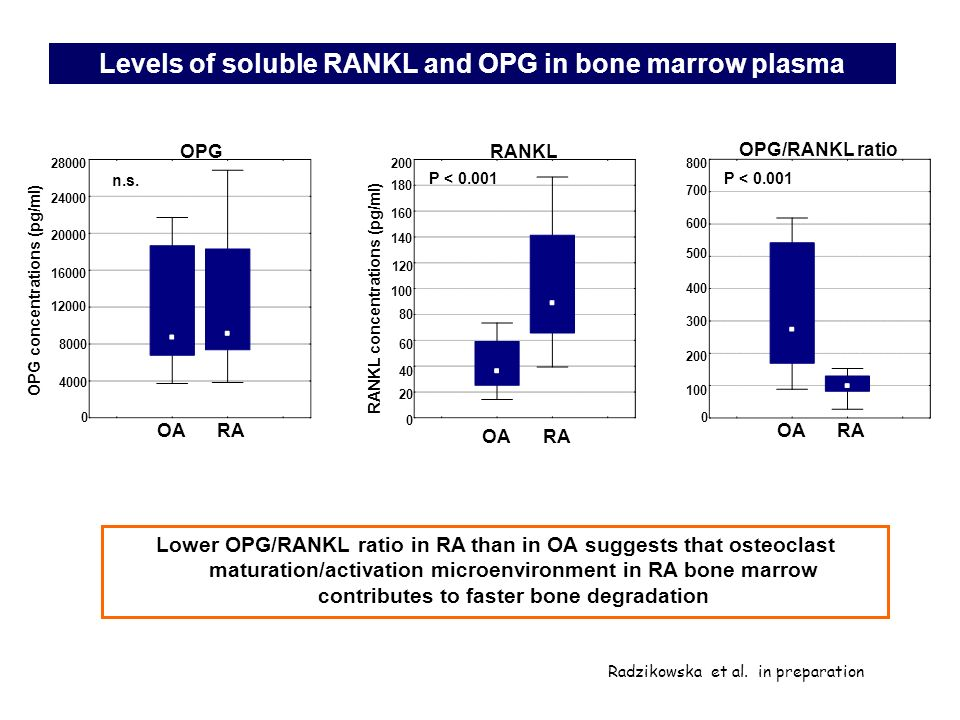 Levels of soluble RANKL and OPG in bone marrow plasma Lower OPG/RANKL ratio in RA than in OA suggests that osteoclast maturation/activation microenvir