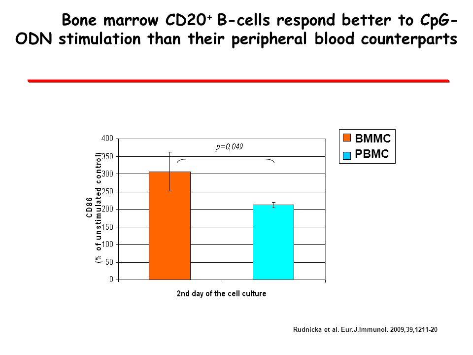 Bone marrow CD20 + B-cells respond better to CpG- ODN stimulation than their peripheral blood counterparts BMMC PBMC Rudnicka et al. Eur.J.Immunol. 20