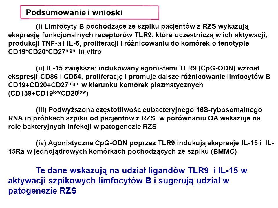 Podsumowanie i wnioski (i) Limfocyty B pochodzące ze szpiku pacjentów z RZS wykazują ekspresję funkcjonalnych receptorów TLR9, które uczestniczą w ich