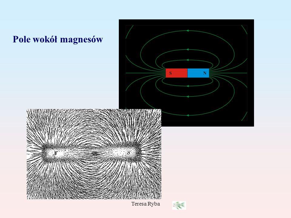 Teresa Ryba Pole wokół magnesów