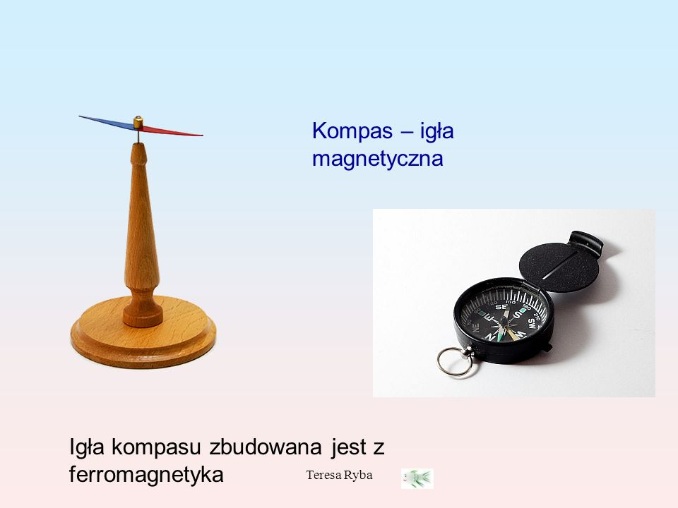 Teresa Ryba Kompas – igła magnetyczna Igła kompasu zbudowana jest z ferromagnetyka